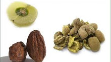 Triphala - the rejuvenator