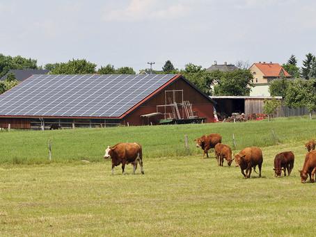 Energia Solar e Agronegócio, parceria que dá certo!