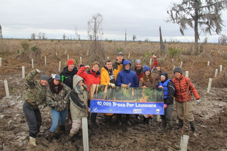 Volunteers plant a mix of swamp trees al
