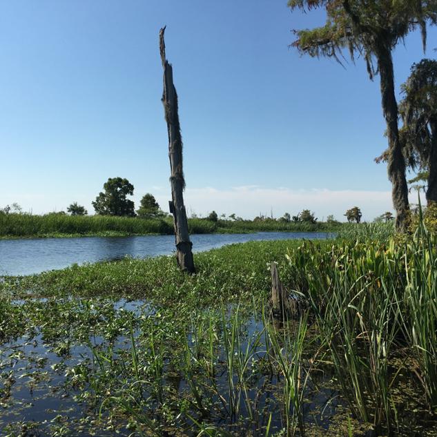 CRCL - Restoring Natural Hydrology