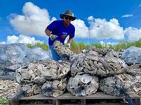 CRCL Chevron oyster shell volunteer-10.j