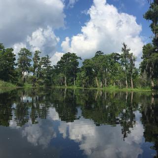 Kayaking in Manchac Swamp