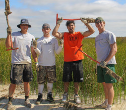 Tulane students planting Spartina patens