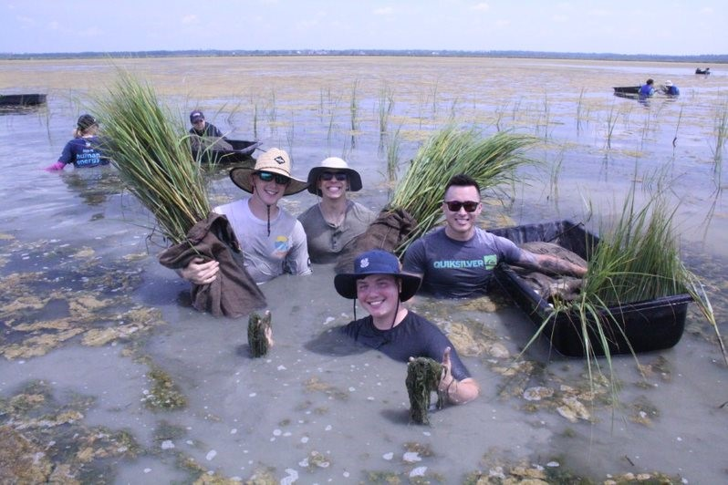 US Coast Guard volunteers planting Spart