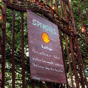 Shell-A-Bration-4681.jpg