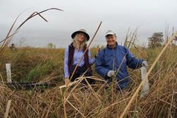 Some reoccurring volunteers planting bal