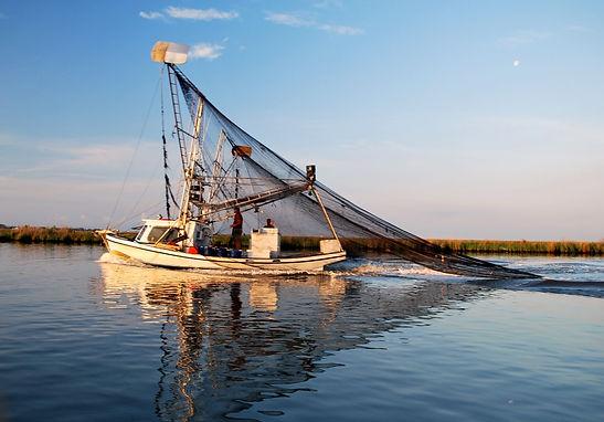 shrimp_boat_diane.jpg