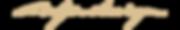 wyn logo 2 script.png
