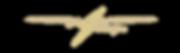 wyn web logo.png
