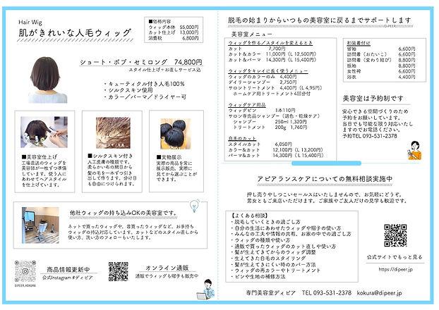 ディピアパンフVer2.0 A4サイズ よこ.jpg