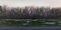 Treeline at Sunset