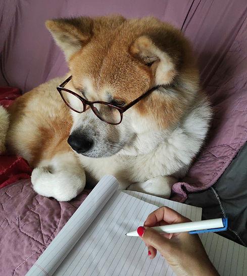 Prestations educateur canin Paris. Retrouvez sur cette page les prestations de Julie Faure, Educateur canin et comportementaliste Canin à Paris (75015)