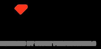 Xion Logo - Black and Orange.png