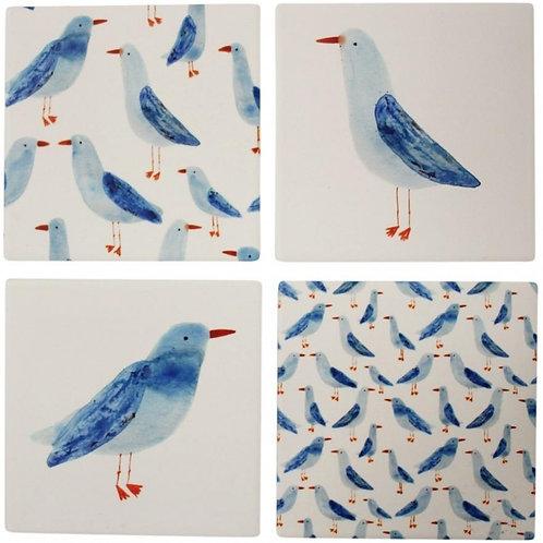 Curious Seagull Coasters