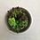 Thumbnail: LAVIDA - Planter Small