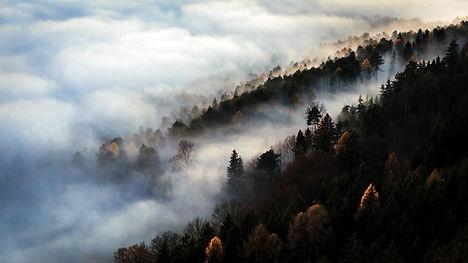 Wave of Fog-2 Kopie.jpg