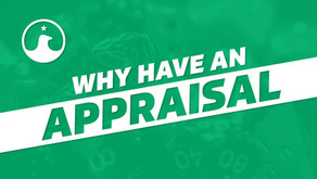 What and Why have Appraisals