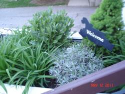 Visitors always WELCOME
