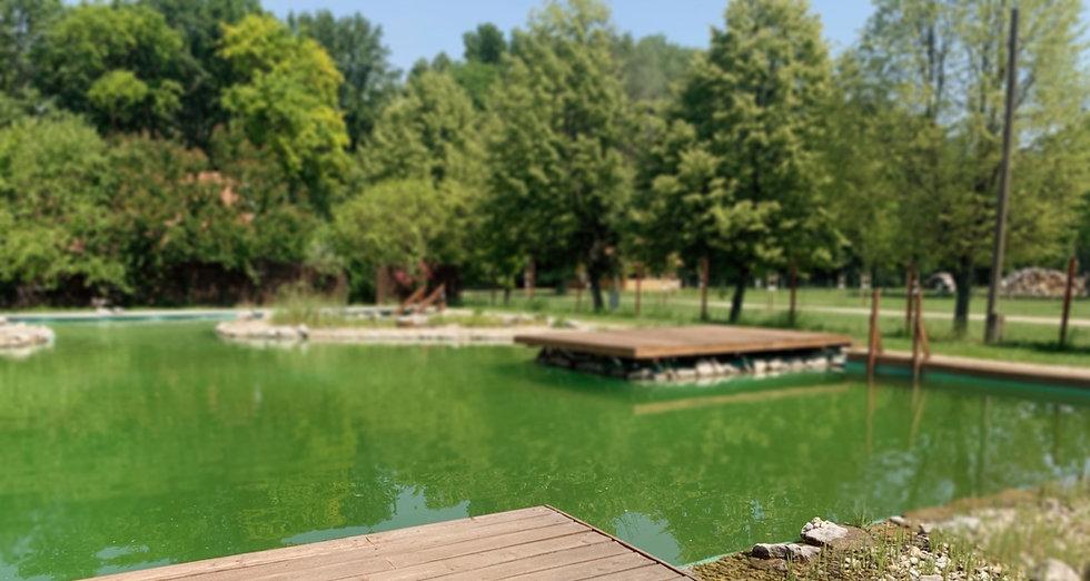 Öko-tó a véneki Aranykert Apartmanoknál