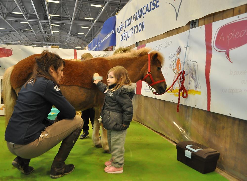 La Fédération Française d'Equitation au Salon de l'Agriculture 2017