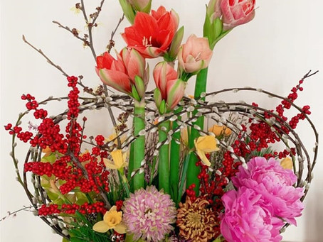 CNY Flowers by Dr. Solomon