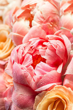 fresh-bunch-of-pink-peonies-and-roses-95