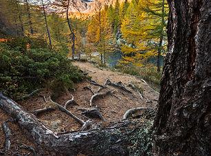 Alpe Devero.jpg