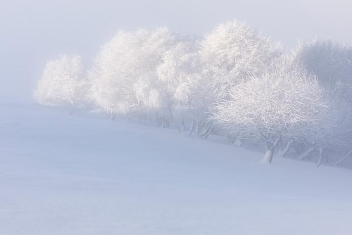 _44A0033_Mottarone neve.jpg