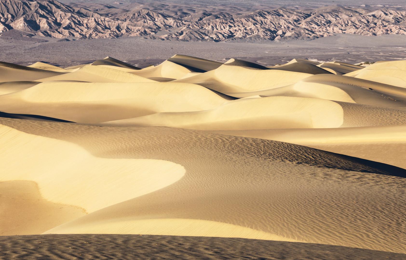 _MG_2050_America Mesquite Flat Sand Dune