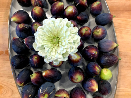 Figs for the WIN