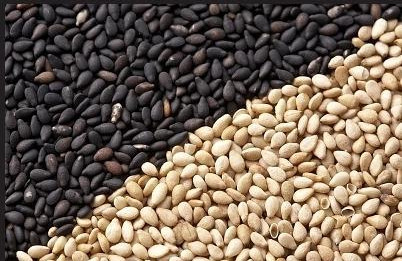 10 Reasons Why You Should Include Til (Sesame Seed) In Your Daily Diet
