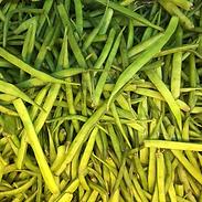 bean (1).png