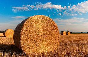 straw-bales-726976_1920.jpg