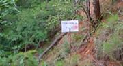 Ground Survey Imagery