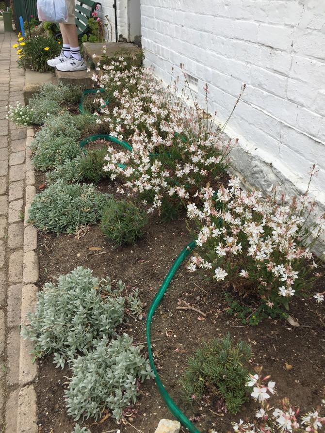 Gardens keep on keeping on