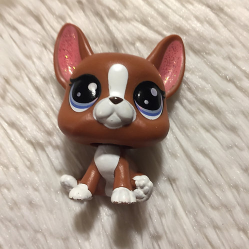 LPS Authentic Chihuahua Dog