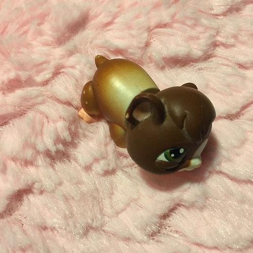 LPS Authentic Guinea Pig