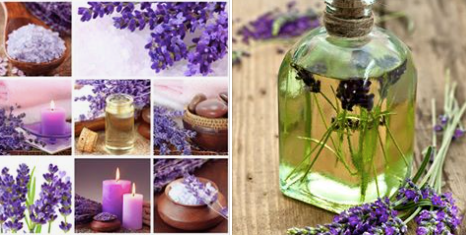 Did you know that Lavender oil Helps Acne