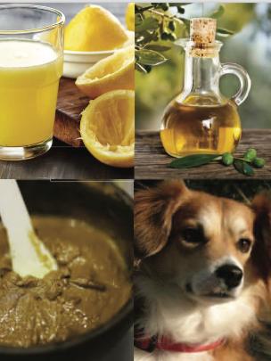 Elixir Sclerosis, inflammation & kidney Ailment