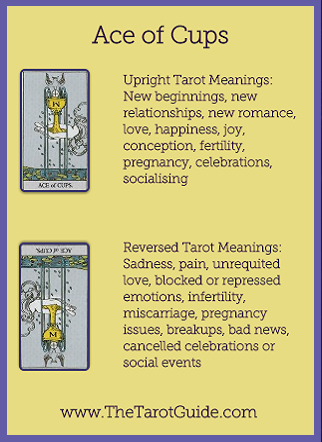 Ace of Cups Tarot Flashcard showing the best keyword meanings for the upright & reversed card, free online Minor Arcana flashcards, made by professional psychic Tarot reader, The Tarot Guide, the easy way to learn how to accurately read Tarot.
