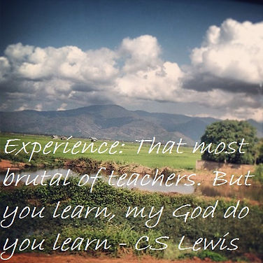 Experience that most brutal of teachers But you learn My god do you learn CS Lewis, CS Lewis Quotes, Inspirational Quotes, Life Lesson Quotes, Spiritual Quotes, Survivor Quotes, Heartbreak Quotes, Experience Quotes