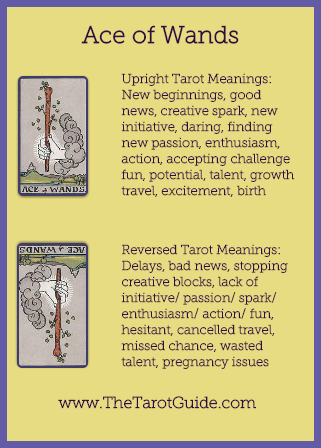 Ace of Wands Tarot Flashcard showing the best keyword meanings for the upright & reversed card, free online Minor Arcana flashcards, made by professional psychic Tarot reader, The Tarot Guide, the easy way to learn how to accurately read Tarot.