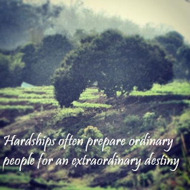 Hardships often prepare ordinary people for an extraordinary destiny, CS Lewis, CS Lewis Quotes, Inspirational Quotes, Spiritual Quotes, Hardship CS Lewis Quote, Ordinary People Quote, Survivor Quotes, Soul Quotes, Motivational Quotes