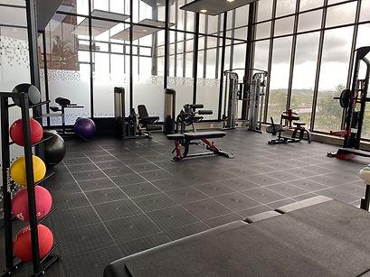 Move rehab gym 1 web.JPG