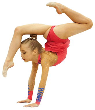 Liberty Academy of Rhythmic Gymnastic New Jersey