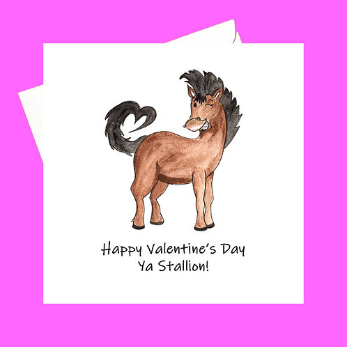 Ya Stallion!