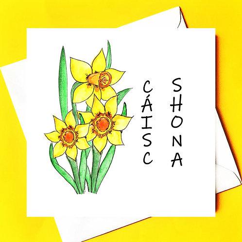 Cáisc Shona