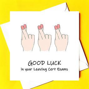good luck leavingcert.jpg