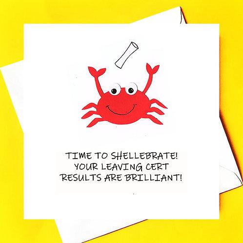 Shellebrate Results
