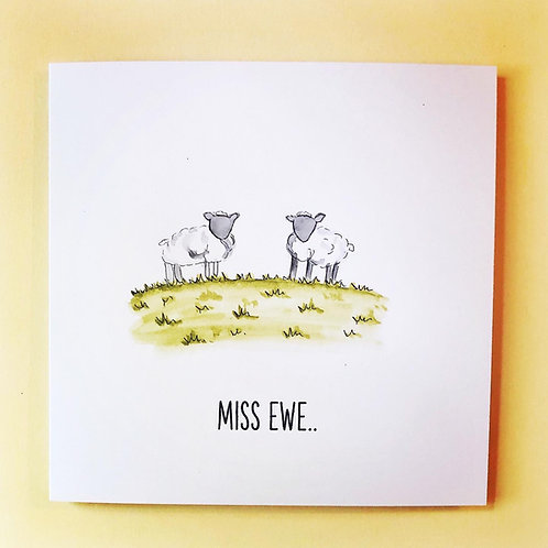 Miss Ewe